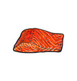 sea red salmon fish meat fillet isolated vector image