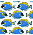 seamless pattern with fish surgeon vector image vector image