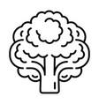 vegan broccoli icon outline style vector image vector image