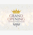 white grand opening banner with golden crown vector image vector image