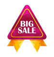 big sale triangle tag vector image vector image