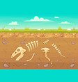 cartoon reptile bones ground archeology buried vector image