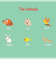 cute pet cartoon character set flat style vector image