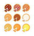 homemade pieand pie slice set with different fruit vector image vector image