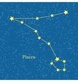 pisces zodiac symbol on background cosmic sky vector image vector image
