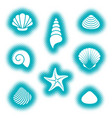 sea shells and starfish icons vector image vector image