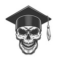 skull in the graduate hat vector image