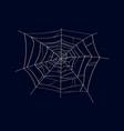 spider cobweb isolated icon vector image