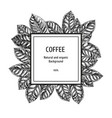 background with coffee sketch vintage vector image vector image