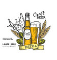beer emblem color vector image vector image