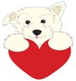 Dog Heart vector image vector image