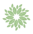 green leaves mandala vector image vector image
