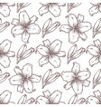 lily seamless pattern of flowers vector image