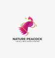 logo peacock color gradient colorful style vector image vector image