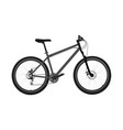 new grey bicycle vector image vector image