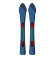 Pair of sport ski isolated on white vector image
