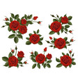 red rose boutonniere set vector image