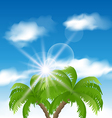 Summer background with sunlight and palmtree vector image vector image