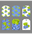 sweet berries labels vector image vector image