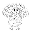 animal doodle for wild turkey vector image vector image