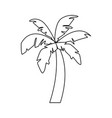 beach palm tree in black and white vector image