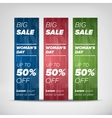 Big sale vertical banners vector image vector image