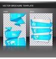 Flyer brochure template vector image vector image