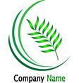 green leaf logonature logo design vector image