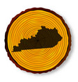 kentucky map on timber vector image vector image