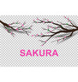 paper art of sakura tree traditional vector image