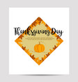 thanksgiving background with foliage and pumpkin vector image vector image
