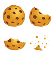 chocolate chip cookies in different eating stages vector image