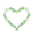 Fresh Vine Leaves in Beautiful Heart Shape vector image vector image