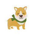 happy dog in scarf icon vector image