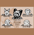 peeking dogs - set heads and paws - dog vector image vector image