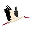 white stork flying white stork sketch style vector image