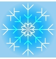 a snowflake vector image