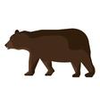 bear cartoon animal isolated in white