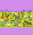 chickens and donkeys farm animal characters group vector image vector image