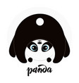 cute little panda vector image vector image