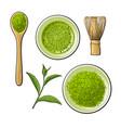 matcha powder bowl wooden spoon and whisk green vector image vector image