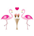 two flamingos in love eating ice cream vector image vector image