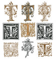 vintage initial letter t with baroque decorations vector image