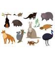 australian animals set isolated cartoon vector image vector image