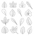 Black and White Leaves Shape Icon Set vector image vector image