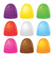 colorful gumdrops soft jelly candy covered with vector image