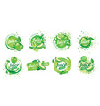 set logos splashing green apple juice on vector image