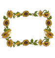 sunflowers frame isolated on white background vector image