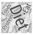 Vegetarianism and the pH miracle diet Word Cloud vector image vector image