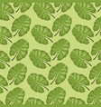 pattern color set decorative of tropical vector image
